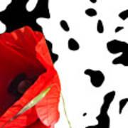 Hidden Poppy Poster