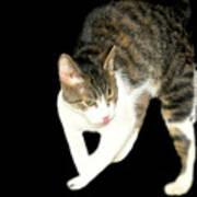 Higgins Does Dance Moves Poster