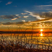 Higgins Lake Sunset With Saw Grass Poster