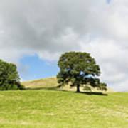 Hills Of Sedbergh Cumbria Poster