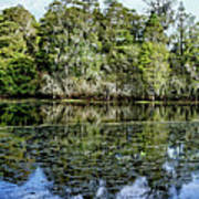 Hillsborough River Panorama 1 Poster