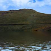 Hillside Reflection Poster