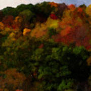 Hint Of Fall Color Painting Poster
