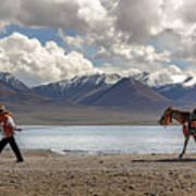 His Horse, Tibet, 2007  Poster
