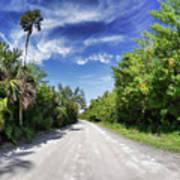 Historic Jungle Trail Vero Bch Fl II Poster