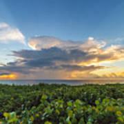 Hobe Sound Beach Sunrise Poster