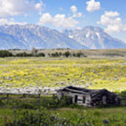 Homestead In The Grand Tetons Poster