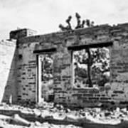 Homestead Ruins Poster