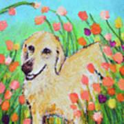 Honey In The Flower Fields Poster