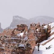 Hoodoos In Snow Poster