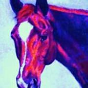 Horse Art Horse Portrait Maduro Psychedelic Poster