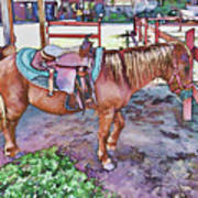 Horse At Zoo Poster