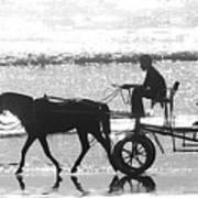 Horse Cart Poster