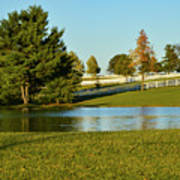 Horse Farm Pond Poster