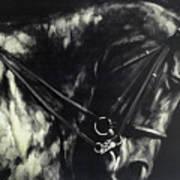 Horse In The Dark II Poster
