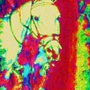 Horse Painting Jumper No Faults Psychedelic Poster