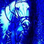 Horse Painting Jumper No Faults Blue Poster