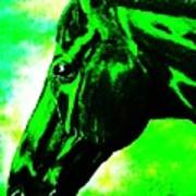 horse portrait PRINCETON green and black Poster