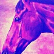 horse portrait PRINCETON pink Poster