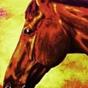 horse portrait PRINCETON purple brown yellow Poster