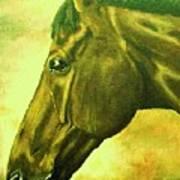 horse portrait PRINCETON soft colors Poster