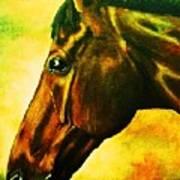 horse portrait PRINCETON yellow Poster