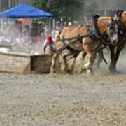 Horse Pull - Team A Poster