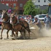 Horse Pull K Poster