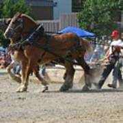 Horse Pull Team A Poster