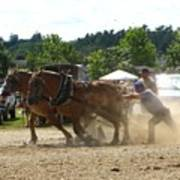 Horse Pulling Team Poster