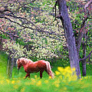 Horse Running In Spring Woods Poster