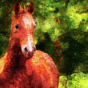 Horse Study #2 Poster