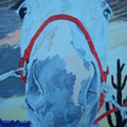 Horse With No Name Poster