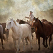 Horses-04 Poster