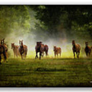 Horses 36 Poster