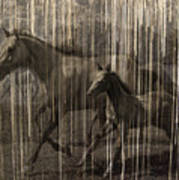 Horses Abstract Mare And Foal Poster