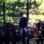 Horses At Arlington Cemetery Poster