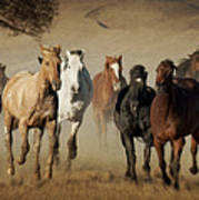 Horses Running Free Poster