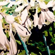Hosta Blooms Poster