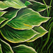 Hostas And Grass Painting Poster