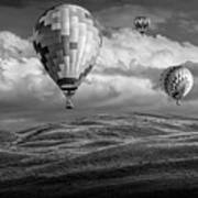 Hot Air Balloons In Black And White Over Fields Poster
