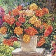 Hot Begonia Poster