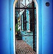 House Door 4 In Charleston Sc  Poster by Susanne Van Hulst