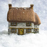 House In Snow Poster