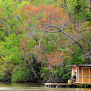 Houseboat On The Apalachicola River Poster