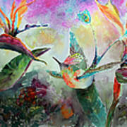 Hummingbird And Birds Of Paradise Tropical Watercolor Poster