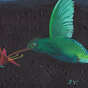 Hummingbird Feeding Poster by M Valeriano