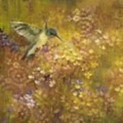 Hummingbird In Hydrangeas Poster