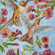 Hummingbirds And Hibiscus II Poster