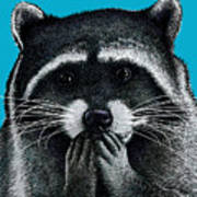 Hungry Raccoon Poster